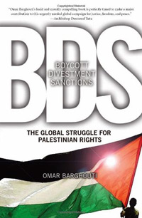 Boycott, Divestment, and Sanctions book cover